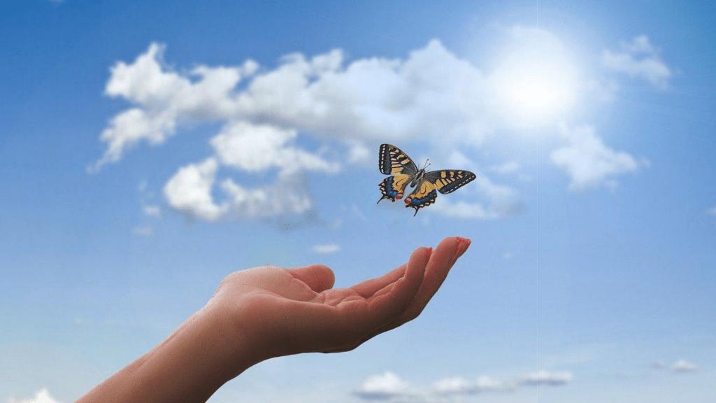 Aliviando Dores Físicas ou Emocionais   Prática de Hipnose Guiada
