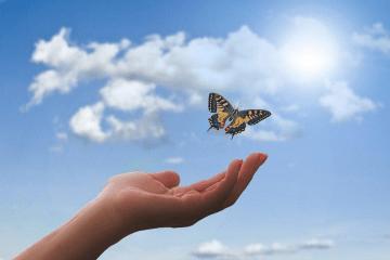Aliviando Dores Físicas ou Emocionais | Prática de Hipnose Guiada